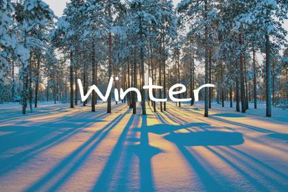 Winter Title Grey 420x280